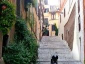 Rome, Italy Apartment #364cRome