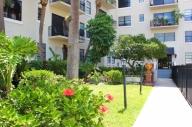 Tampa, United States of America Apartment #100bTampa