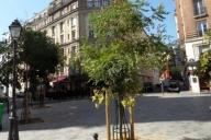 Cities Reference Apartament Fotografie #103ePARIS
