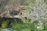 Seggiano Vacation Apartment Rentals, #100Seggiano: 2 dormitorio, 1 Bano, huèspedes 5