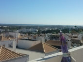Villas Reference Apartment picture #100Tavira