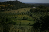 Villas Reference Ferienwohnung Bild #100VilaVicosa
